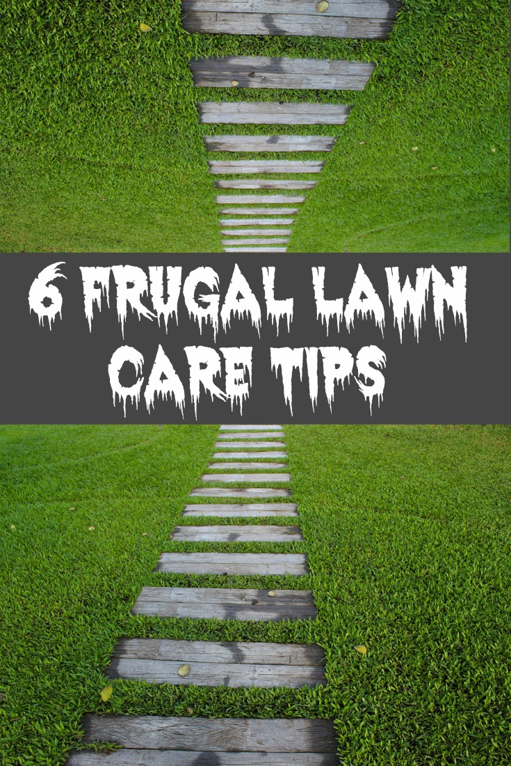 6 Frugal Lawn Care Tips