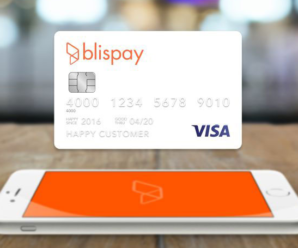 Online Stores That Accept Blispay To Buy Now, Pay Later