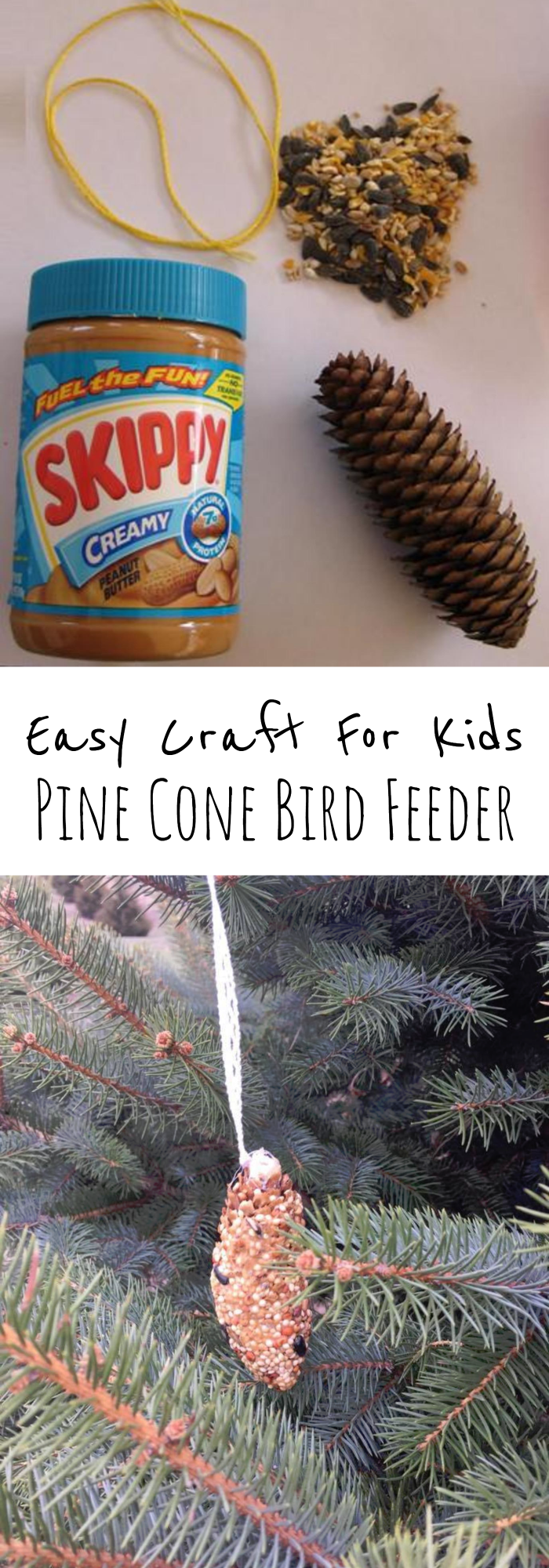 Pine Cone Bird Feeder Craft For Kids