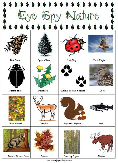 Free Printable: Eye-Spy Nature Scavenger Hunt