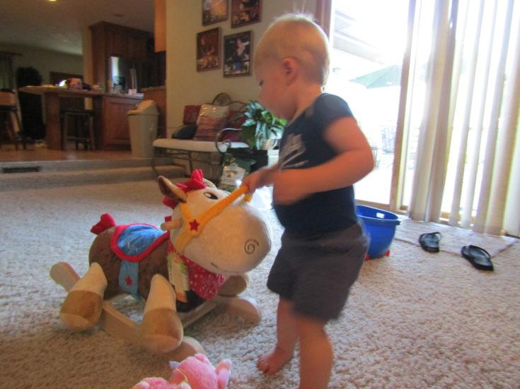 Oakley pulling horse