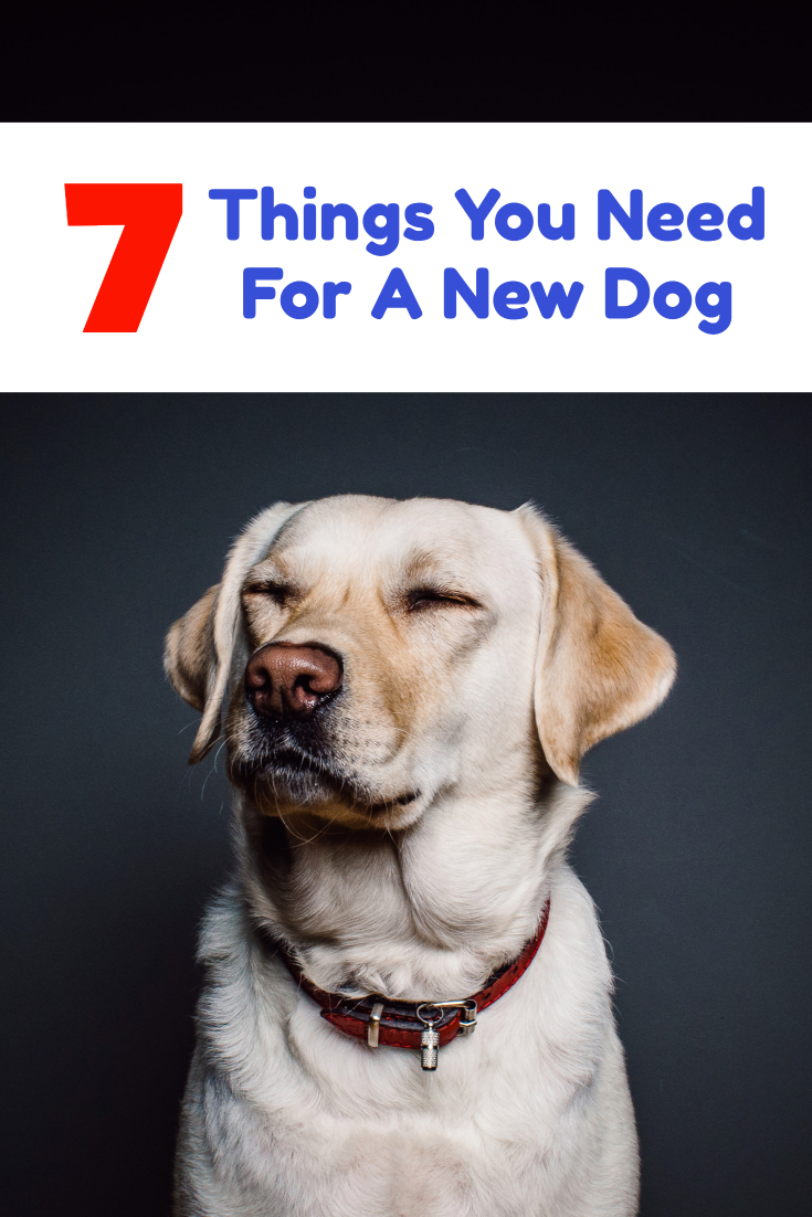 Things you need to buy for a new house 28 images money for Things you need in a house