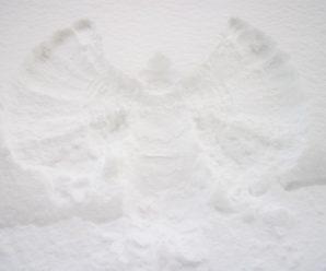 Big Foot Makes Snow Angels