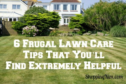 6 Frugal Lawn Care Tips That You'll Find Extremely Helpful